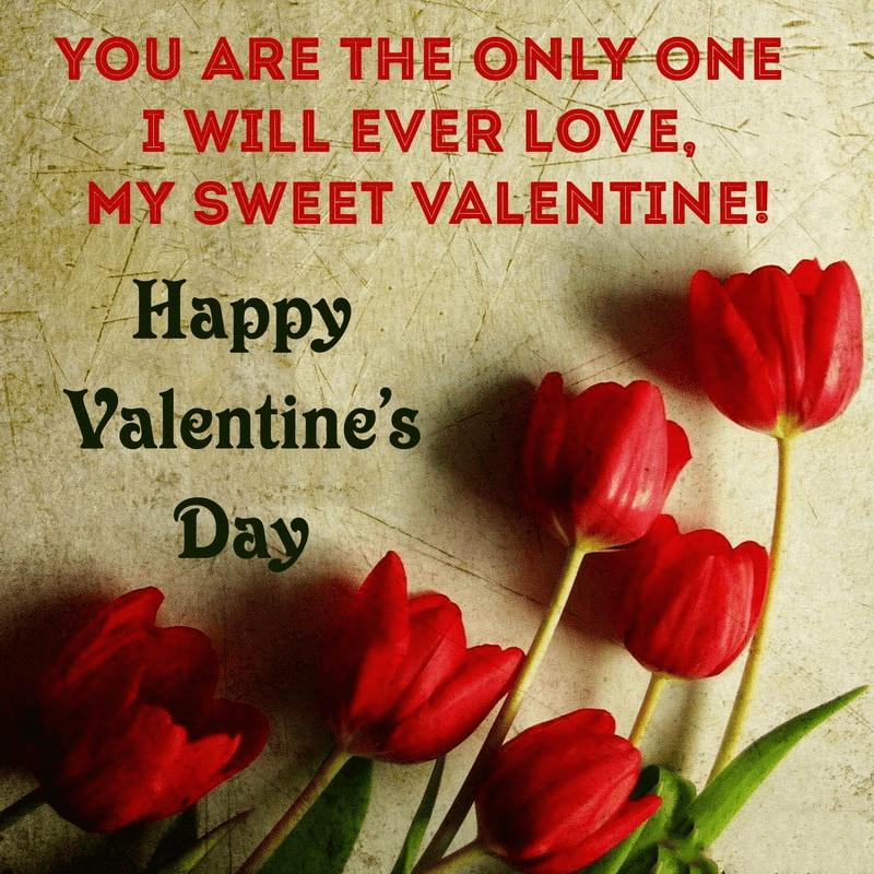 Happy Valentine's Day Wishes 10