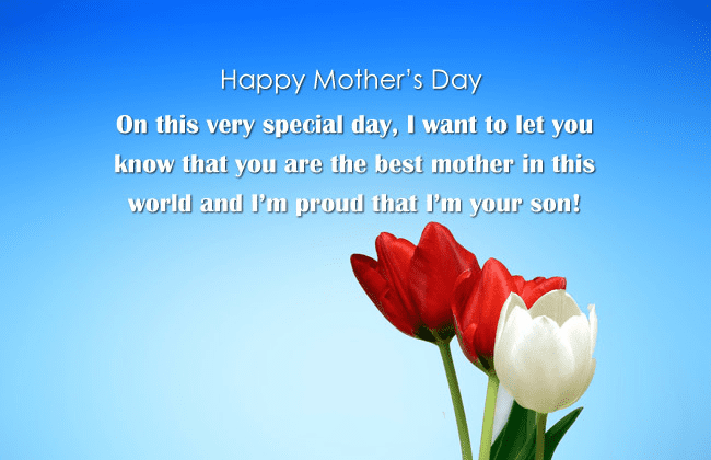 Mother's Day Wishes png 5