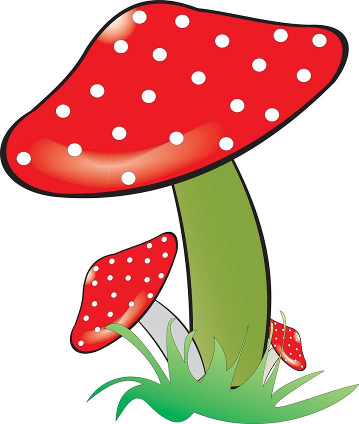 Mushroom clipart 1