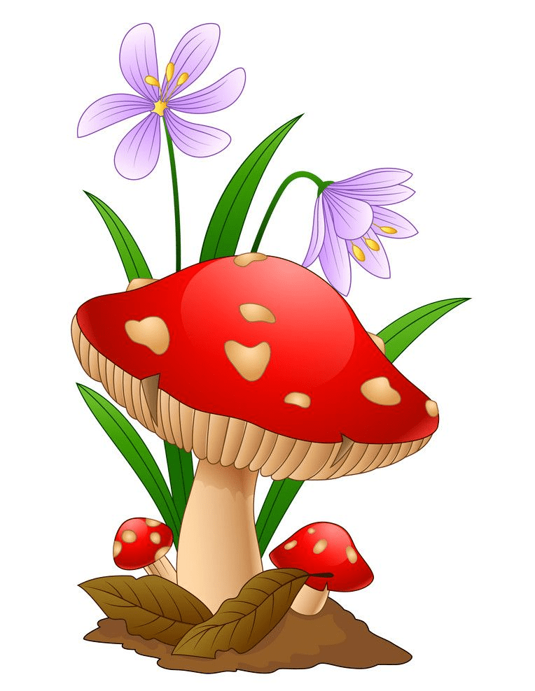 Mushroom clipart 4
