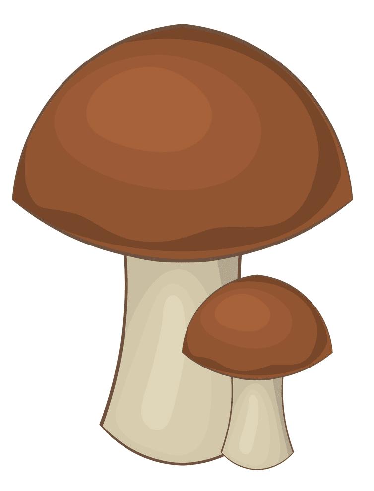 Mushroom clipart picture