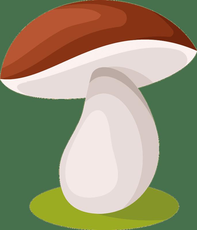 Mushroom clipart transparent 3