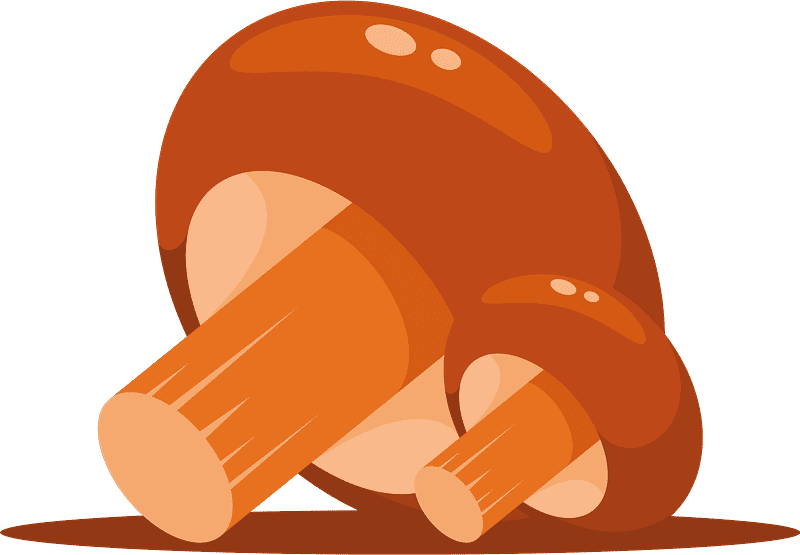 Mushroom clipart transparent 4