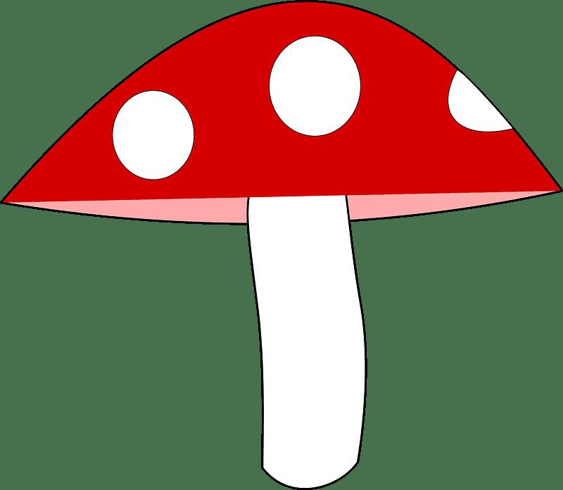 Mushroom clipart transparent 9