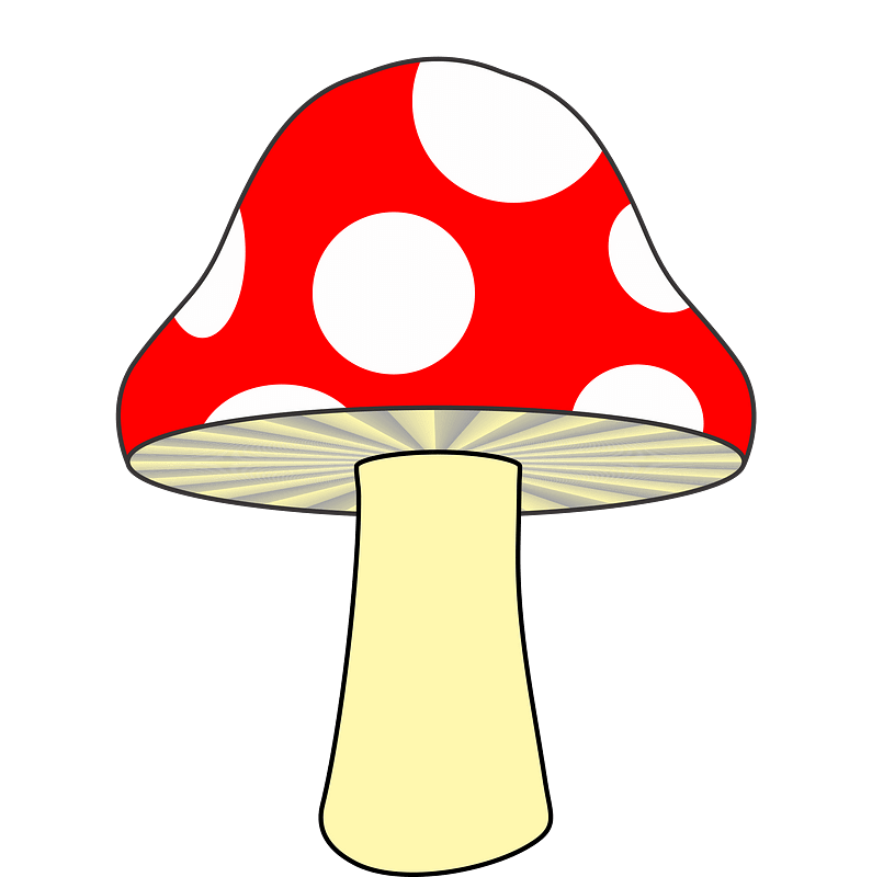 Mushroom clipart transparent free