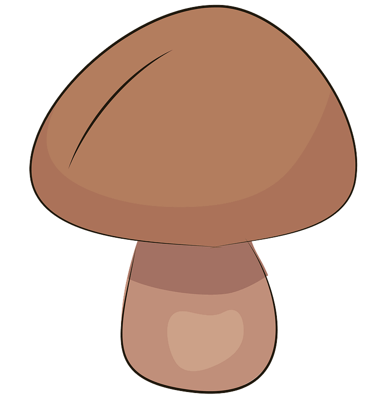 Mushroom clipart transparent image