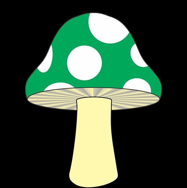 Mushroom clipart transparent png