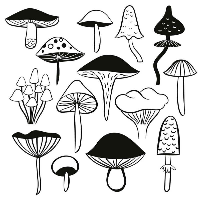 Mushrooms Clipart Black and White free