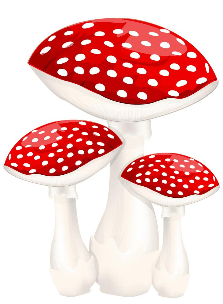 Mushrooms clipart 1