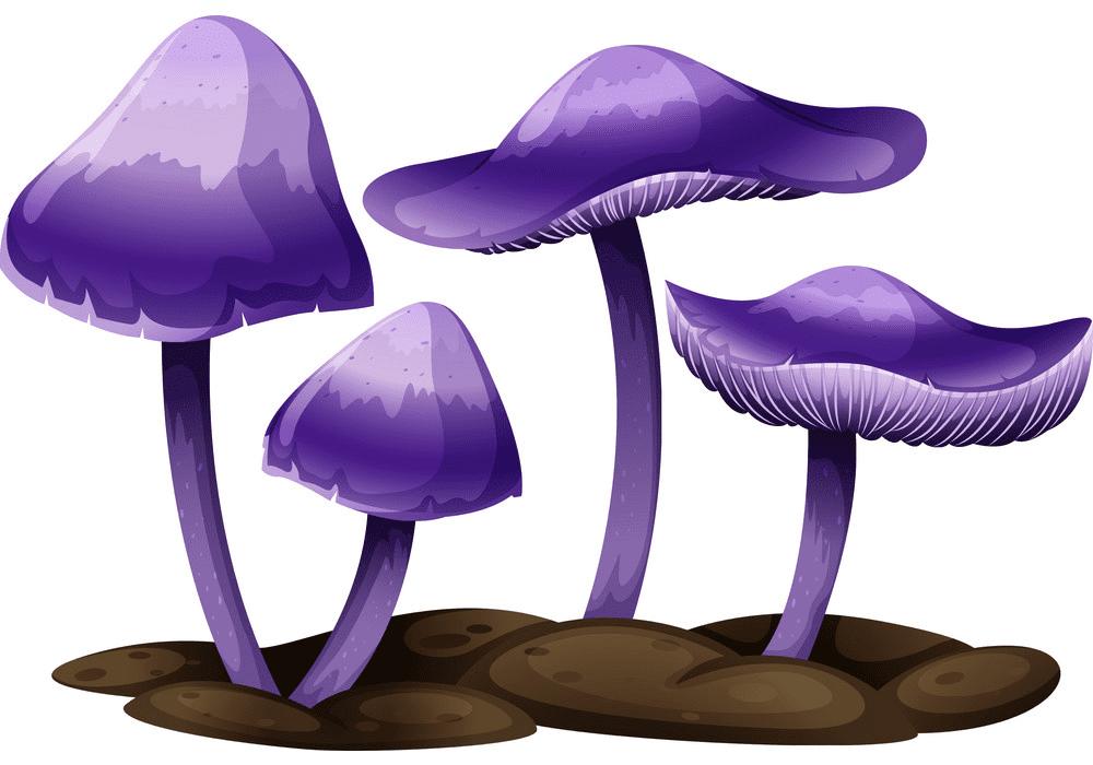 Mushrooms clipart 2