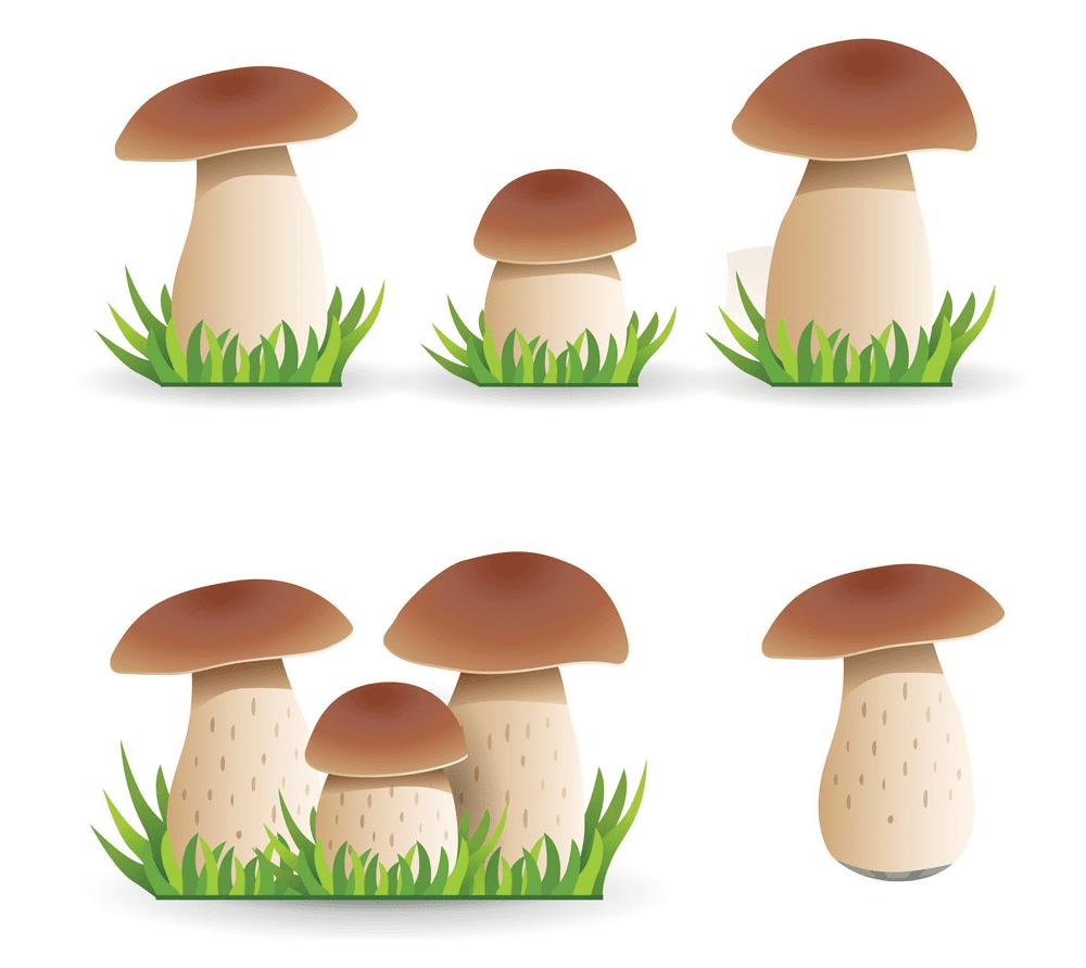 Mushrooms clipart free image