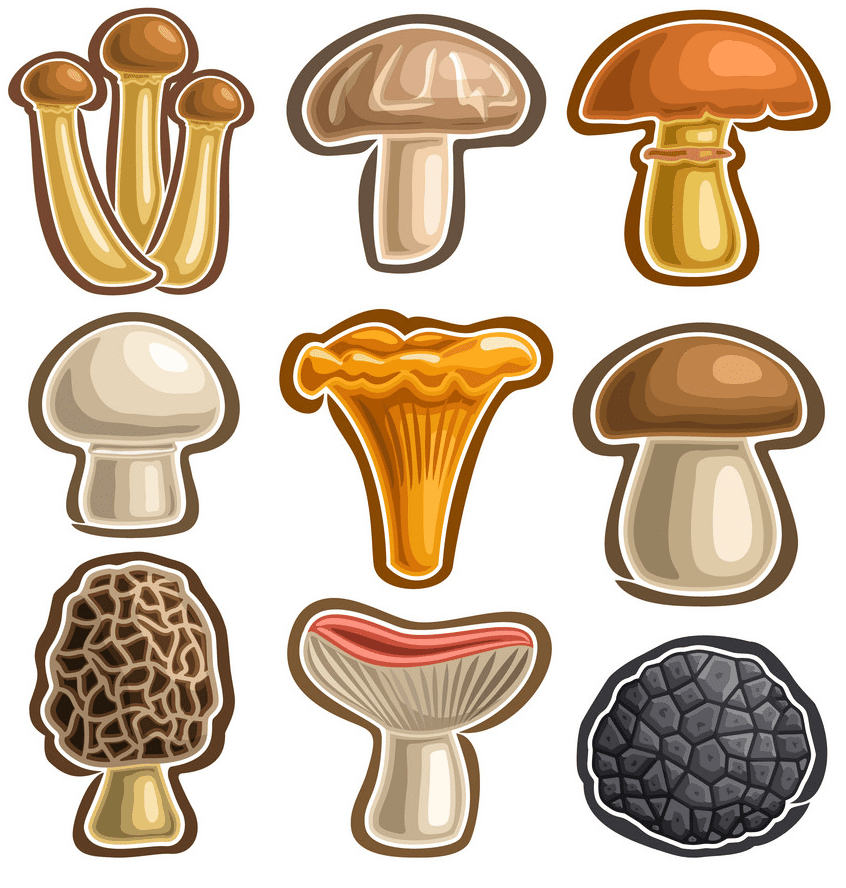 Mushrooms clipart free images