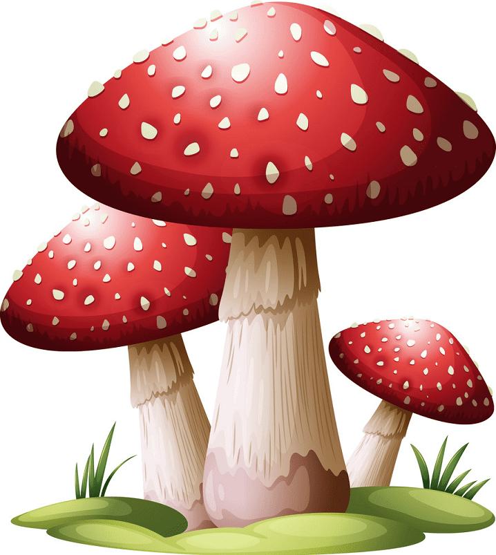 Mushrooms clipart free