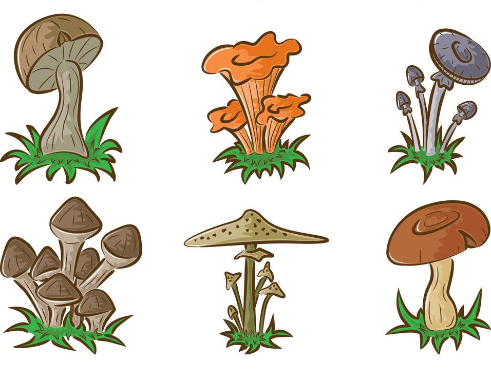 Mushrooms clipart images