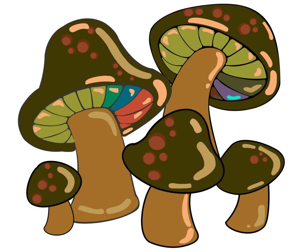 Mushrooms clipart picture