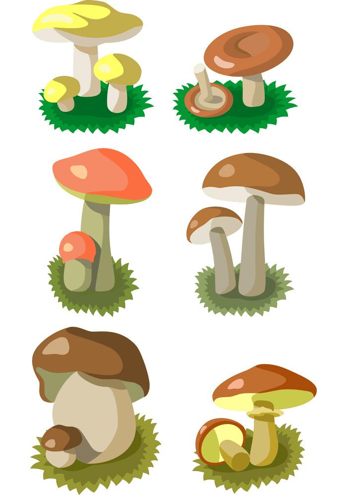 Mushrooms clipart png image
