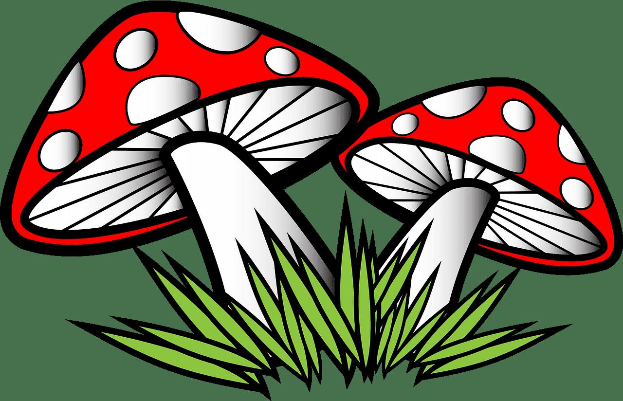 Mushrooms clipart transparent 5