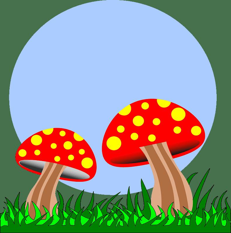 Mushrooms clipart transparent 7