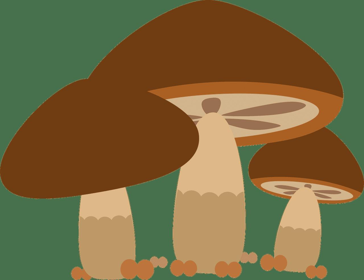 Mushrooms clipart transparent 9