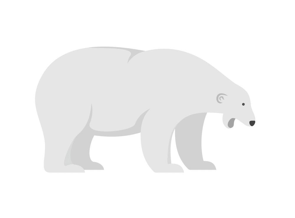 Polar Bear clipart 2