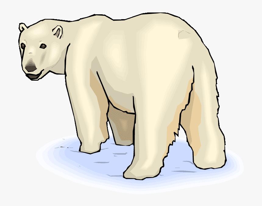 Polar Bear clipart 3