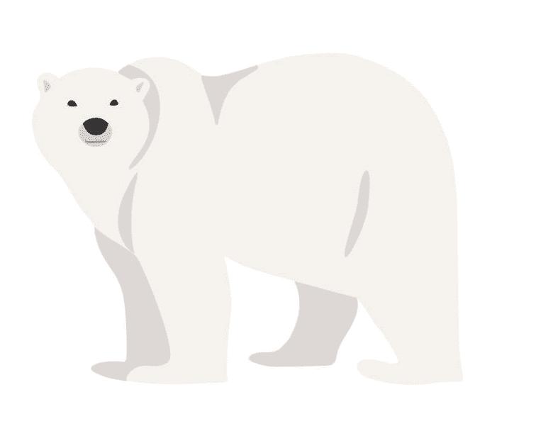Polar Bear clipart 8