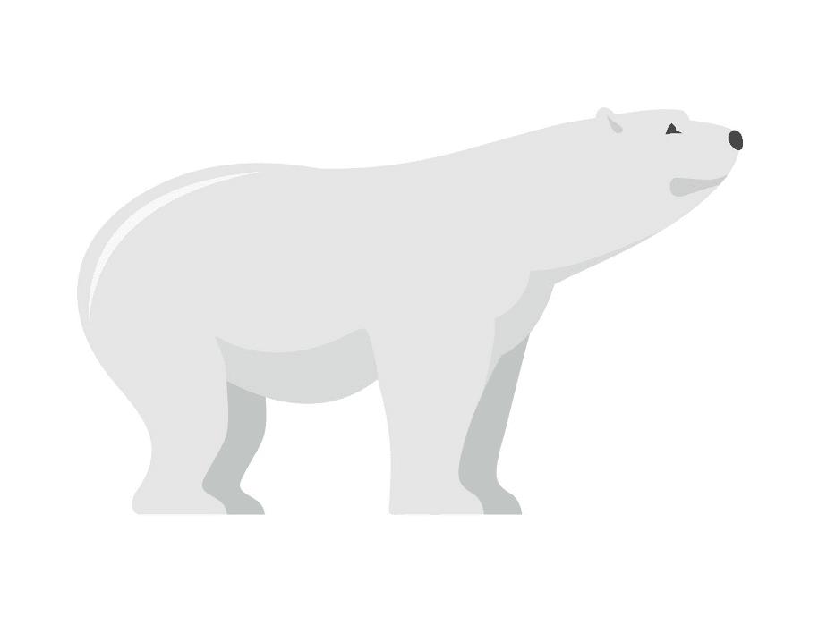 Polar Bear clipart download