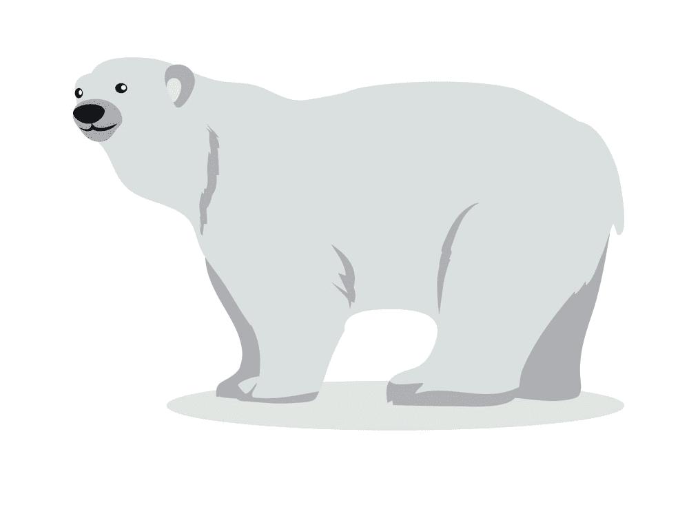 Polar Bear clipart for kids