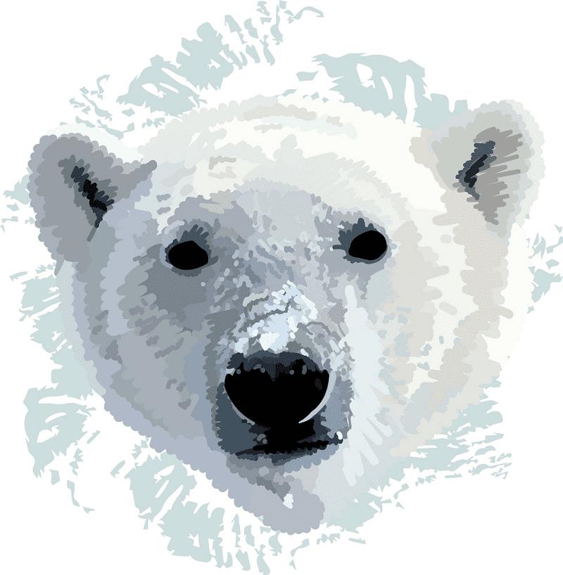 Polar Bear clipart free image