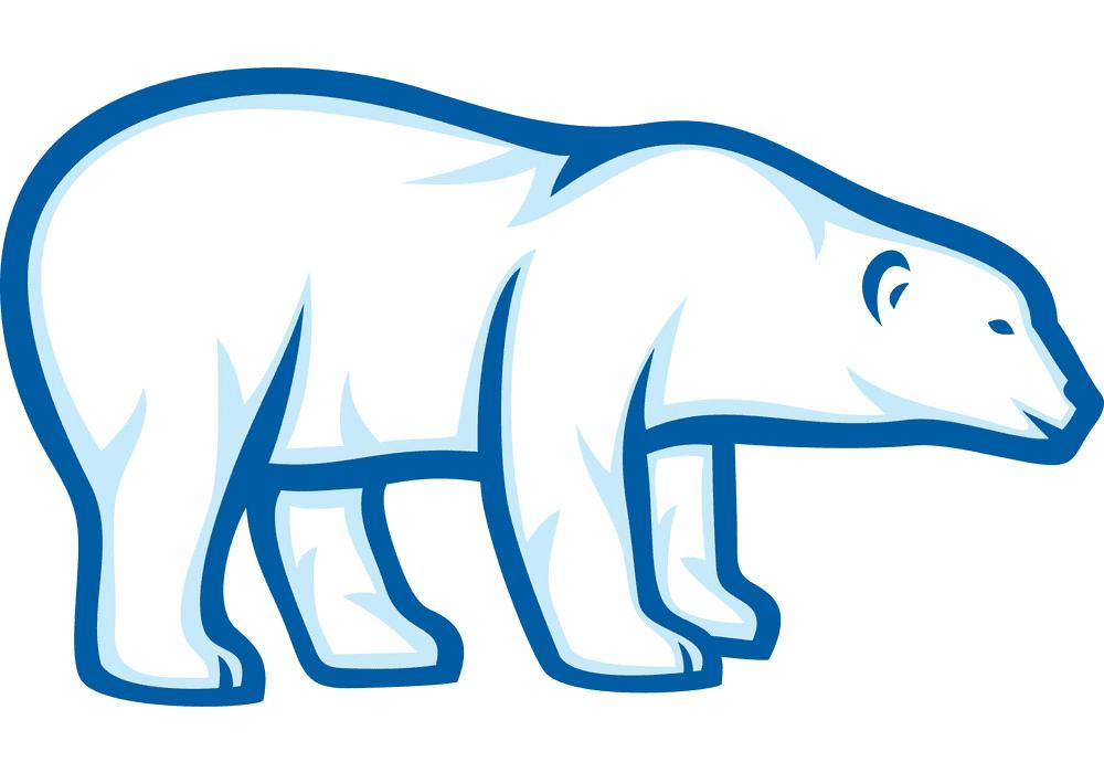 Polar Bear clipart png download