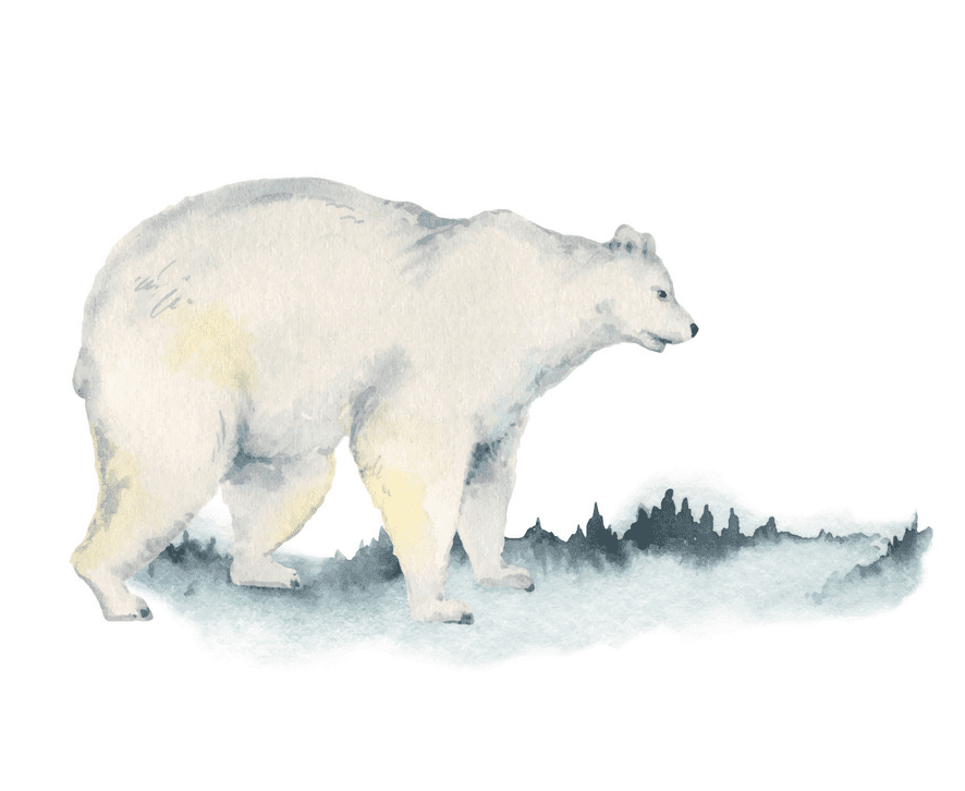 Polar Bear clipart png free