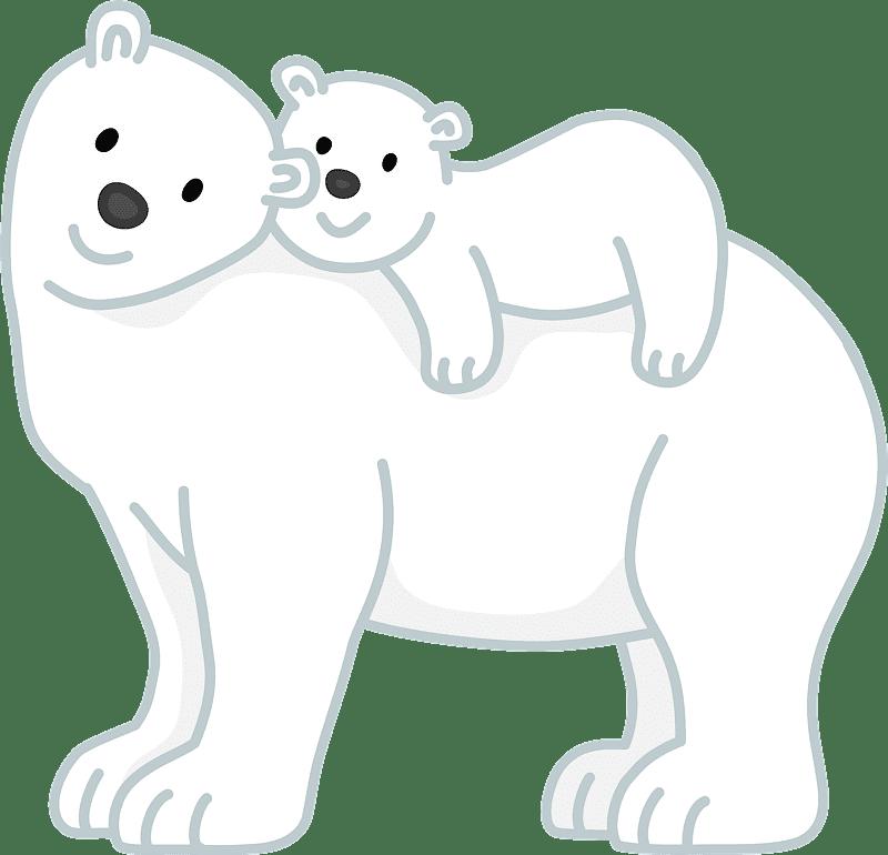Polar Bear clipart transparent 13
