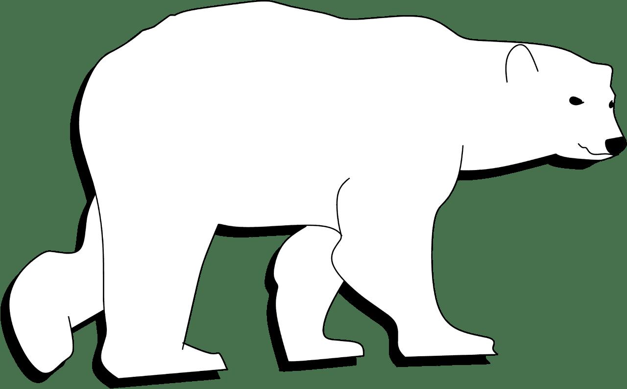 Polar Bear clipart transparent 6