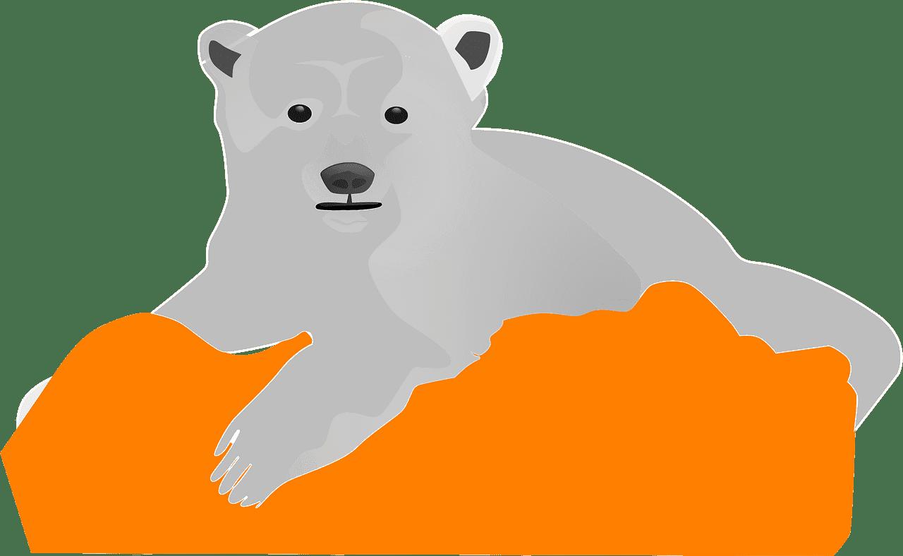 Polar Bear clipart transparent background 3