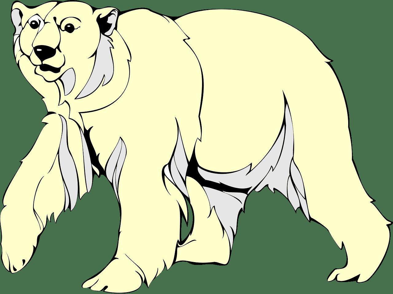 Polar Bear clipart transparent background 5