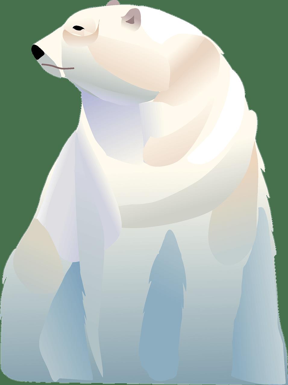 Polar Bear clipart transparent free