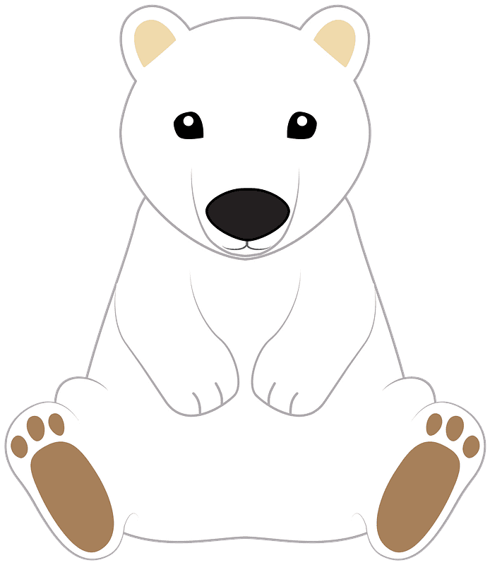Polar Bear clipart transparent images