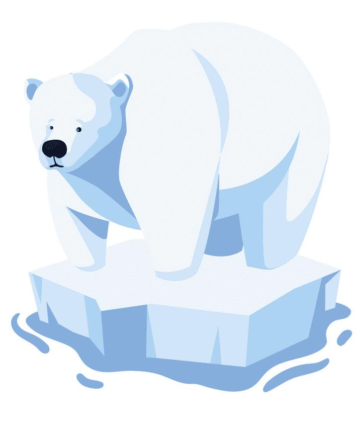 Polar Bear on Ice clipart for free