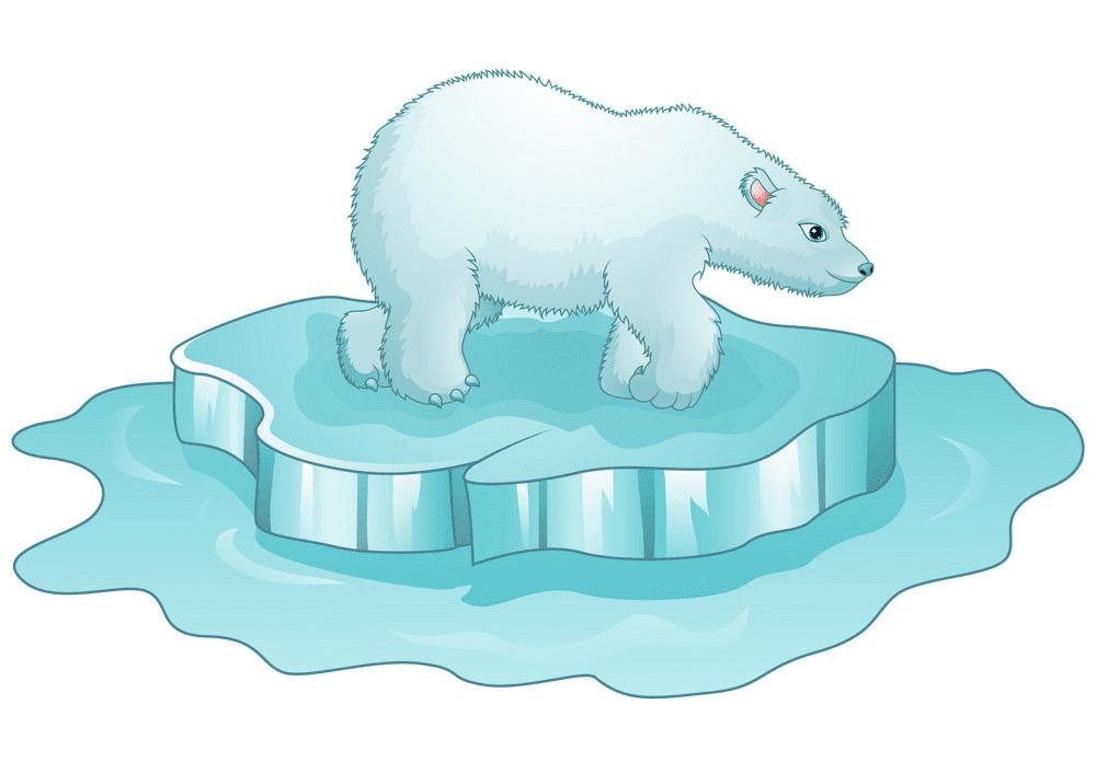Polar Bear on Ice clipart free