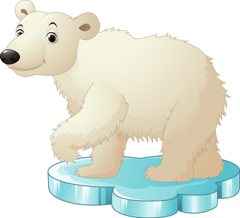 Polar Bear on Ice clipart png image