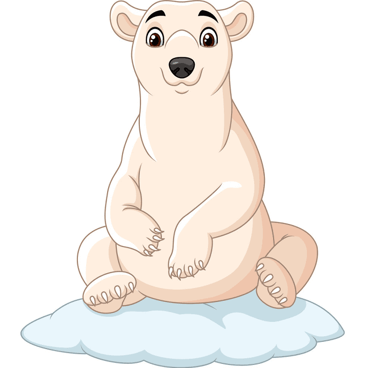 Polar Bear on Ice clipart png