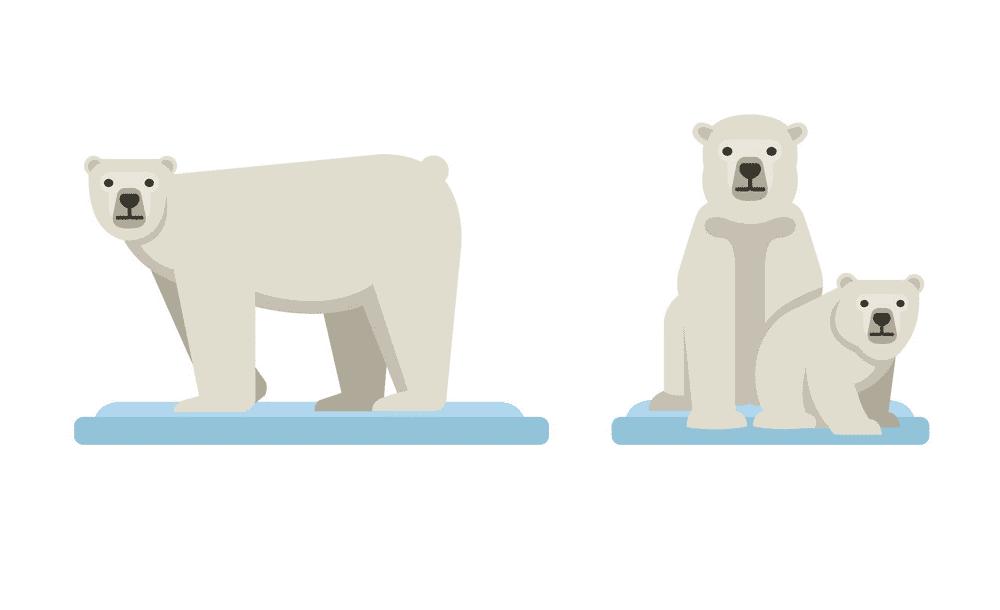 Polar Bears on Ice clipart free