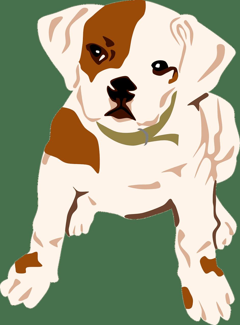 Puppy clipart transparent 3