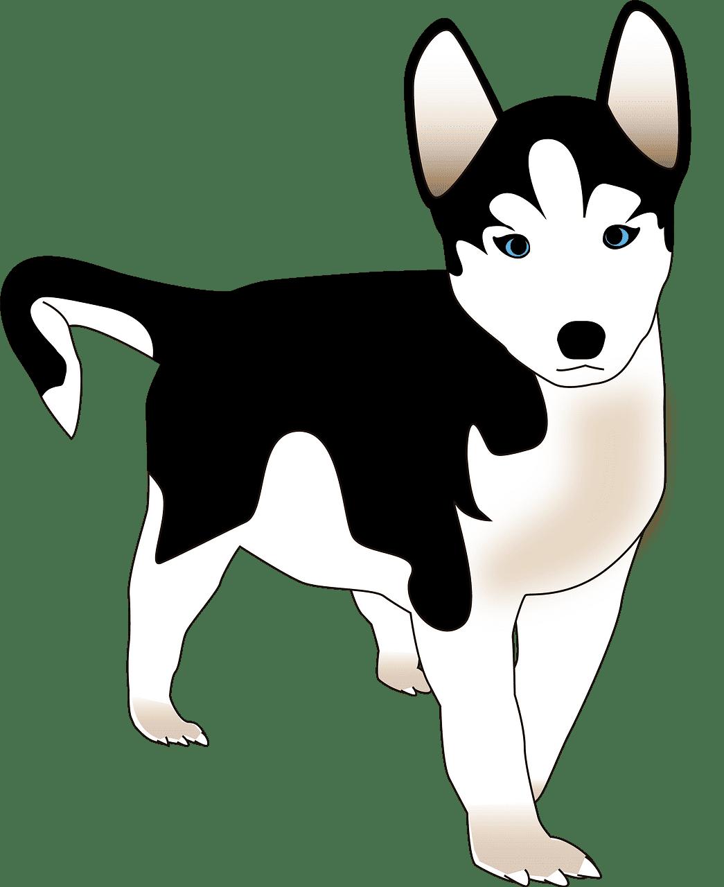 Puppy clipart transparent 7