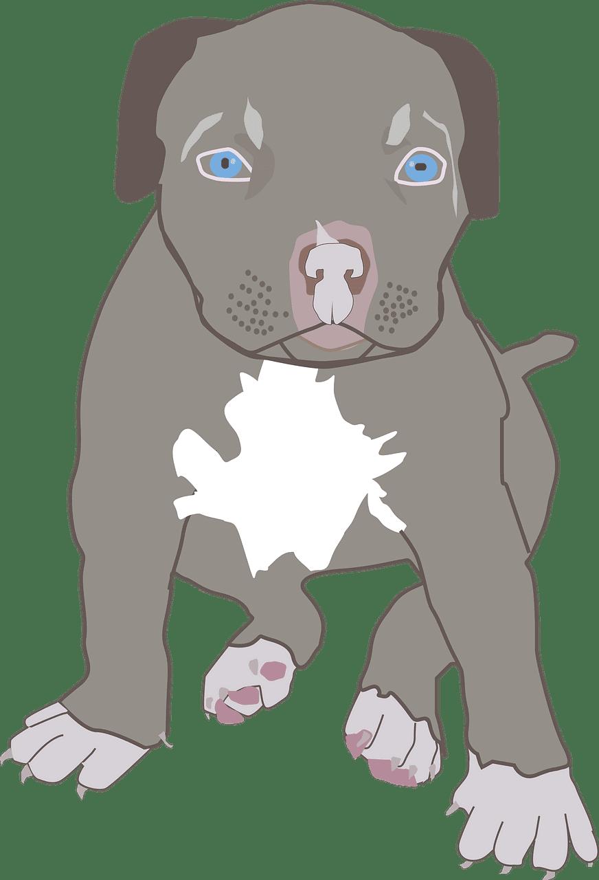 Puppy clipart transparent background 6