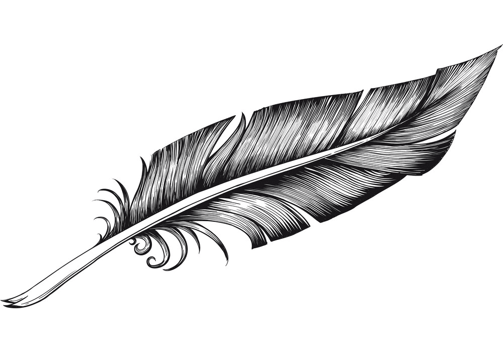 Quill Pen clipart images