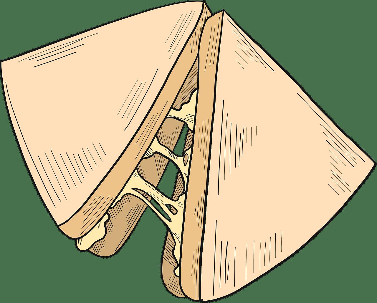 Sandwich clipart transparent for kid
