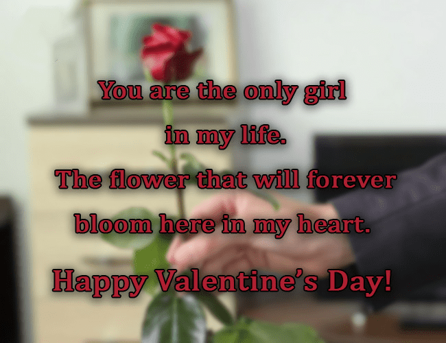Valentine's Day Wishes png 2