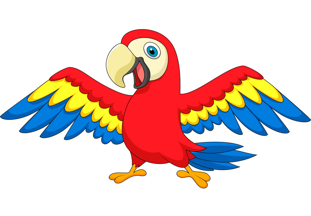 Clipart Parrot free