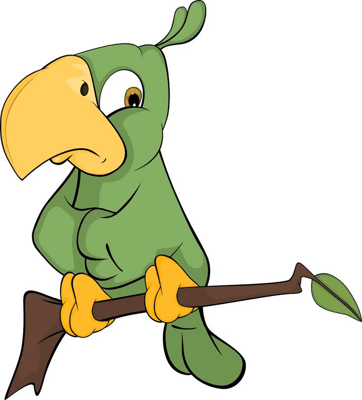 Clipart Parrot images